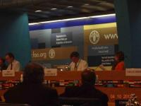 8th  Commission on Phytosanitary Measures, abril 2013